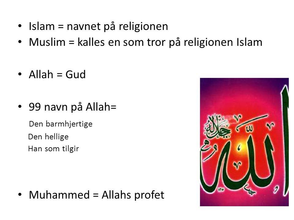 Islam = navnet på religionen Muslim = kalles en som tror på religionen Islam Allah = Gud 99 navn på Allah= Den barmhjertige Den hellige Han som tilgir Muhammed = Allahs profet