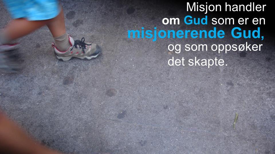 Misjon handler om Gud som er en og som oppsøker det skapte. misjonerende Gud,