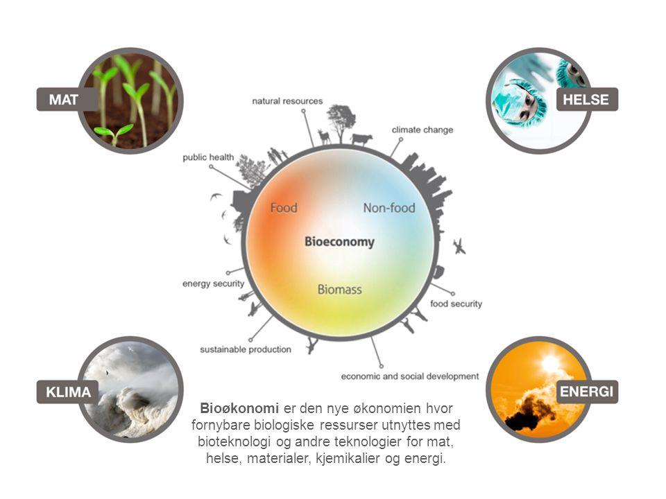 Bioøkonomi er den nye økonomien hvor fornybare biologiske ressurser utnyttes med bioteknologi og andre teknologier for mat, helse, materialer, kjemikalier og energi.
