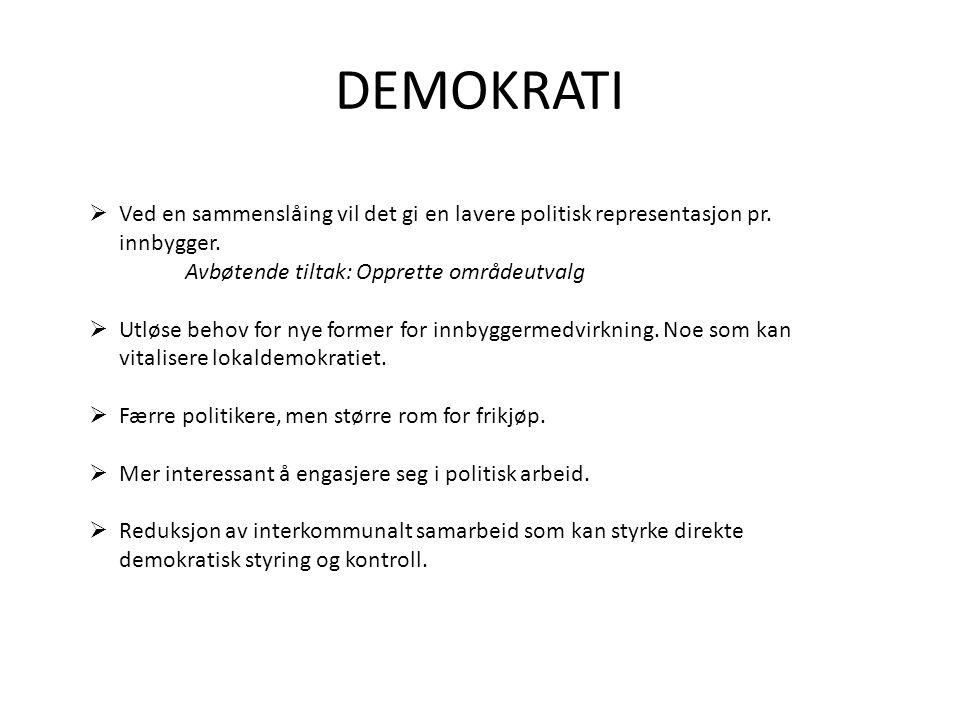 DEMOKRATI  Ved en sammenslåing vil det gi en lavere politisk representasjon pr.