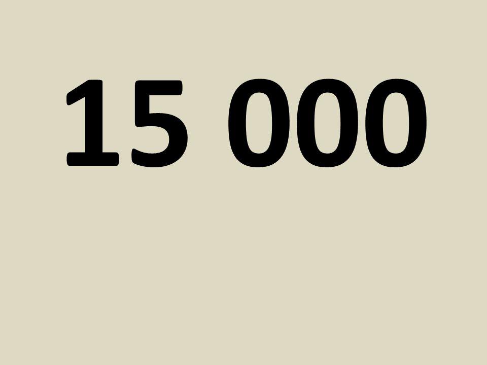 15 000