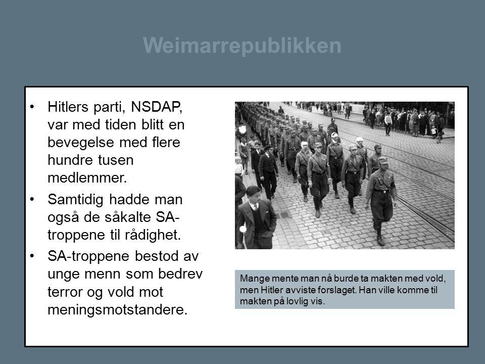 Weimarrepublikken Hitlers parti, NSDAP, var med tiden blitt en bevegelse med flere hundre tusen medlemmer. Samtidig hadde man også de såkalte SA- trop