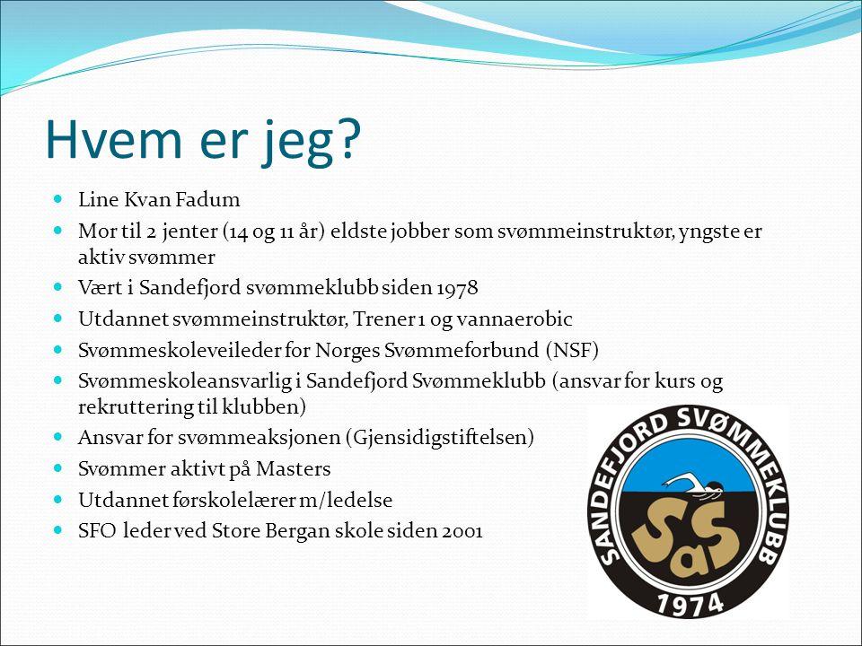 Rollen som sv.skole ansvarlig Hovedansvaret for for svømmeskolen i klubben.