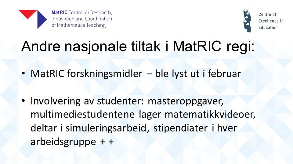 Andre nasjonale tiltak i MatRIC regi: MatRIC forskningsmidler – ble lyst ut i februar Involvering av studenter: masteroppgaver, multimediestudentene lager matematikkvideoer, deltar i simuleringsarbeid, stipendiater i hver arbeidsgruppe + +