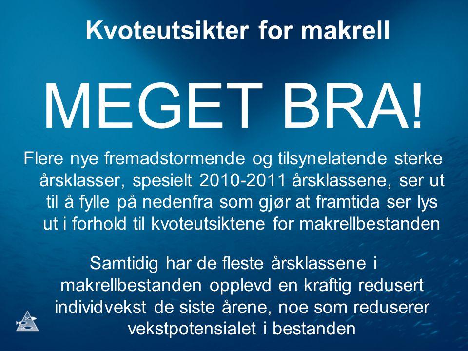 Kvoteutsikter for makrell MEGET BRA! Flere nye fremadstormende og tilsynelatende sterke årsklasser, spesielt 2010-2011 årsklassene, ser ut til å fylle