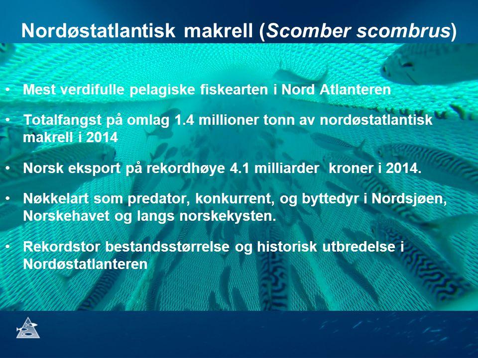 Nordøstatlantisk makrell (Scomber scombrus) Mest verdifulle pelagiske fiskearten i Nord Atlanteren Totalfangst på omlag 1.4 millioner tonn av nordøstatlantisk makrell i 2014 Norsk eksport på rekordhøye 4.1 milliarder kroner i 2014.