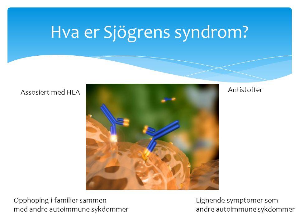 Autoimmun sykdom Hva er Sjögrens syndrom? Assosiert med HLA Opphoping i familier sammen med andre autoimmune sykdommer Antistoffer Lignende symptomer