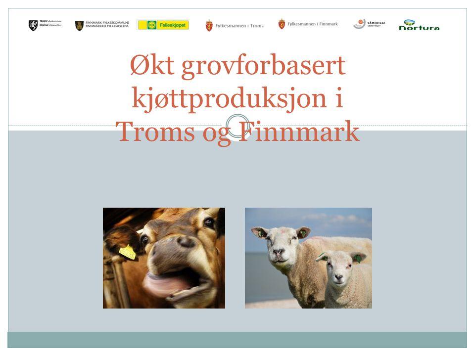 Økt grovforbasert kjøttproduksjon i Troms og Finnmark