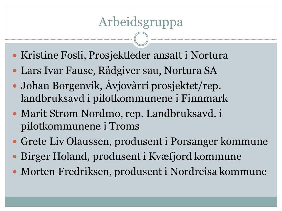 Arbeidsgruppa Kristine Fosli, Prosjektleder ansatt i Nortura Lars Ivar Fause, Rådgiver sau, Nortura SA Johan Borgenvik, Àvjovàrri prosjektet/rep. land