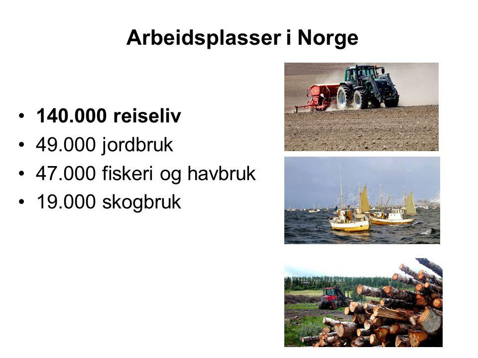 Arbeidsplasser i Norge 140.000 reiseliv 49.000 jordbruk 47.000 fiskeri og havbruk 19.000 skogbruk