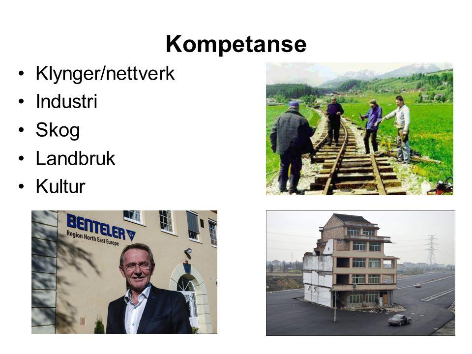 Kompetanse Klynger/nettverk Industri Skog Landbruk Kultur