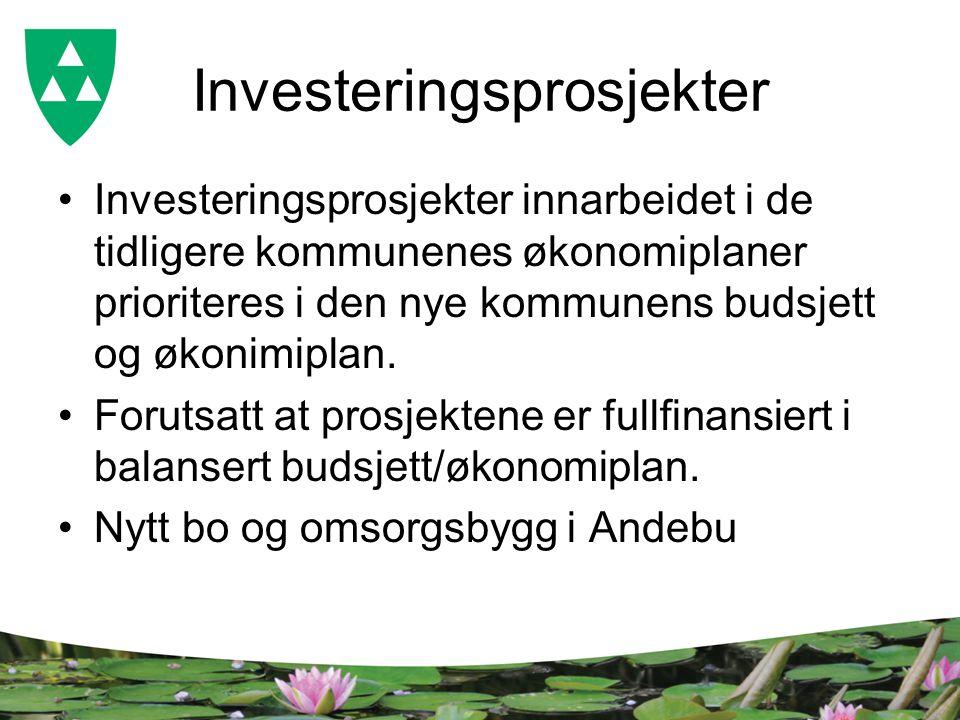 Investeringsprosjekter Investeringsprosjekter innarbeidet i de tidligere kommunenes økonomiplaner prioriteres i den nye kommunens budsjett og økonimiplan.