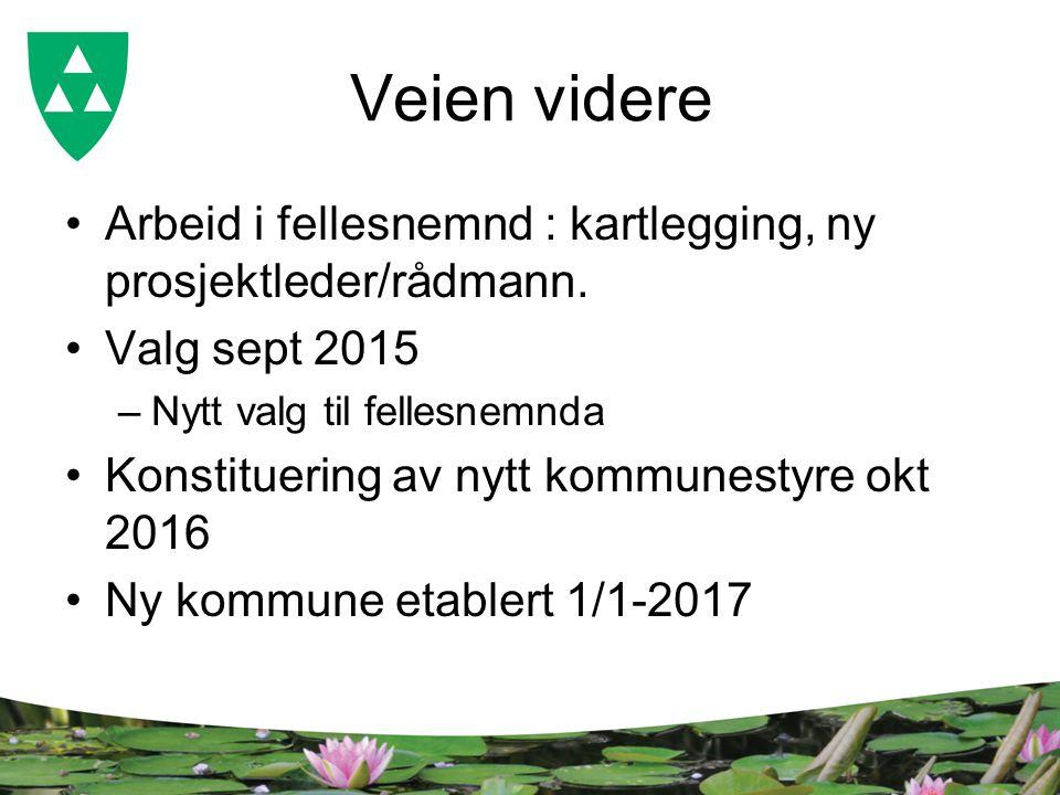 Veien videre Arbeid i fellesnemnd : kartlegging, ny prosjektleder/rådmann.
