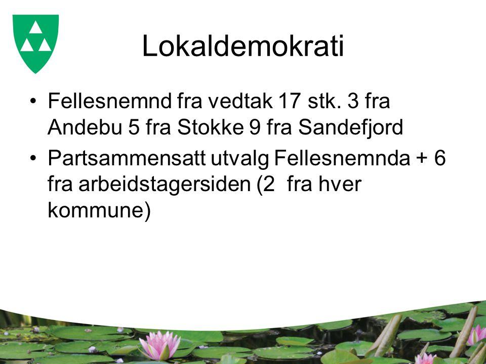 Lokaldemokrati Fellesnemnd fra vedtak 17 stk. 3 fra Andebu 5 fra Stokke 9 fra Sandefjord Partsammensatt utvalg Fellesnemnda + 6 fra arbeidstagersiden