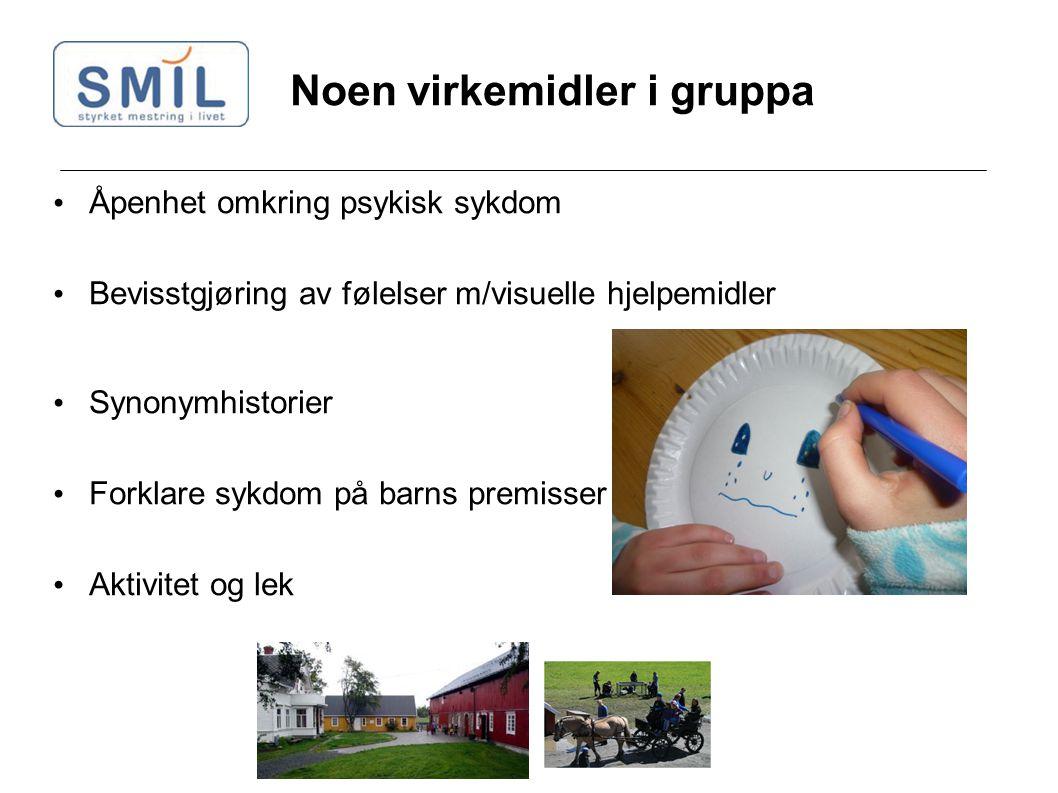 Noen virkemidler i gruppa Åpenhet omkring psykisk sykdom Bevisstgjøring av følelser m/visuelle hjelpemidler Synonymhistorier Forklare sykdom på barns