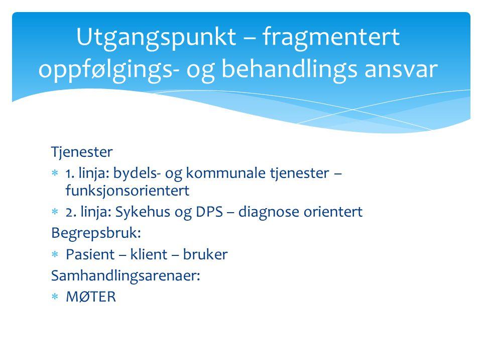 Tjenester  1. linja: bydels- og kommunale tjenester – funksjonsorientert  2.