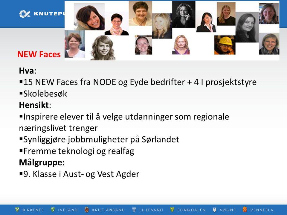 NEW Faces Hva:  15 NEW Faces fra NODE og Eyde bedrifter + 4 I prosjektstyre  Skolebesøk Hensikt:  Inspirere elever til å velge utdanninger som regi