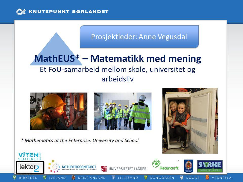 Prosjektleder: Anne Vegusdal