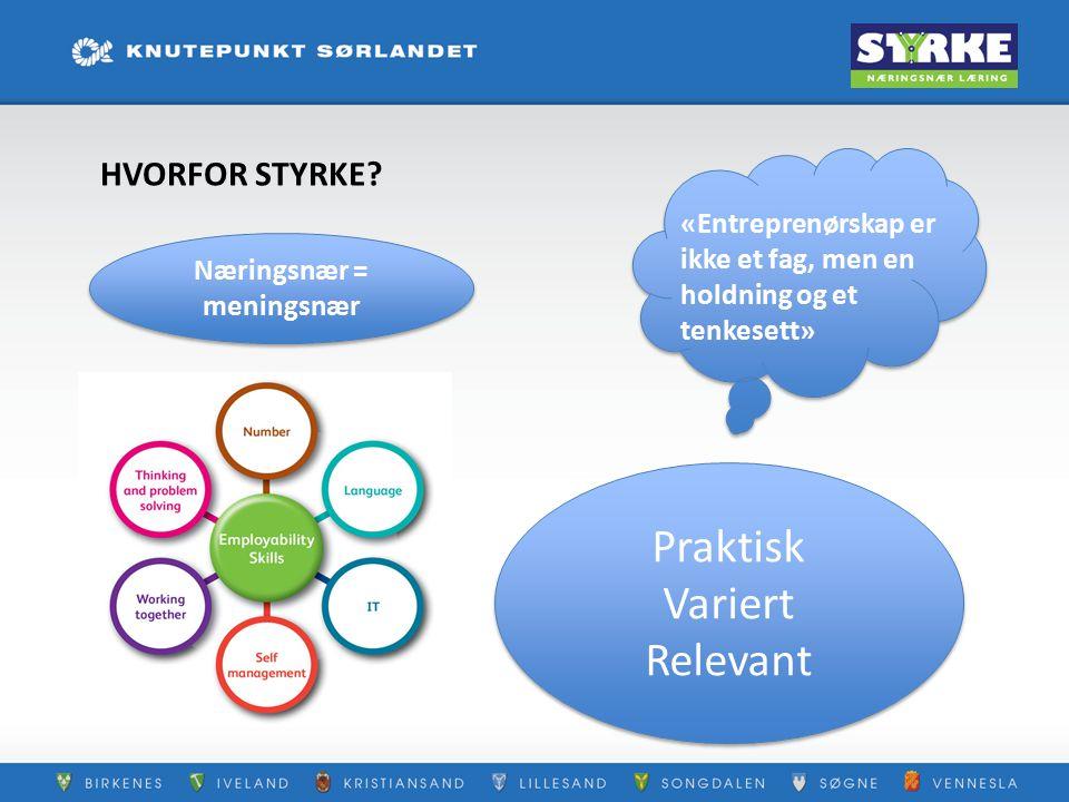 Vi bygger STYRKE gjennom: I samarbeid med  satsingen på inkluderende læringsmiljø;  lokalsamfunnet Kapasitetsbygging Kompetansedeling i nettverk Entreprenøriell orientert opplæring Aktiv bruk av programmer Valgfag eks: Teknologi i praksis Erasmus+