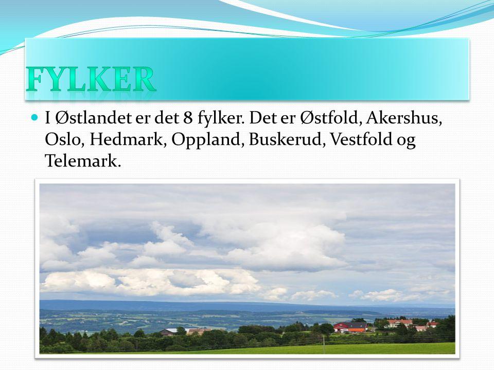 I Østlandet er det 8 fylker. Det er Østfold, Akershus, Oslo, Hedmark, Oppland, Buskerud, Vestfold og Telemark.