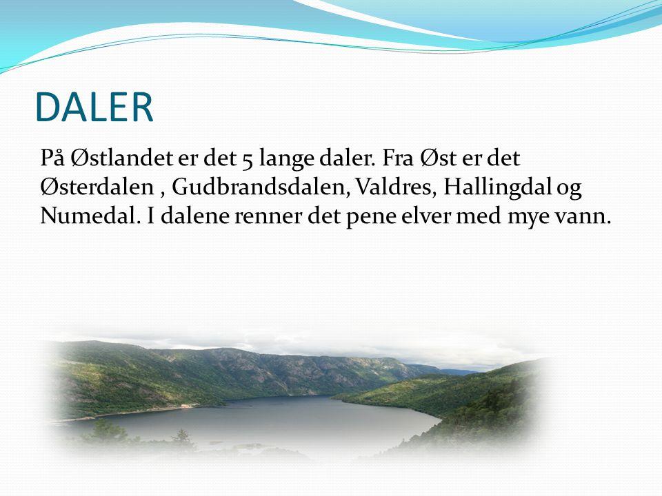 DALER På Østlandet er det 5 lange daler. Fra Øst er det Østerdalen, Gudbrandsdalen, Valdres, Hallingdal og Numedal. I dalene renner det pene elver med