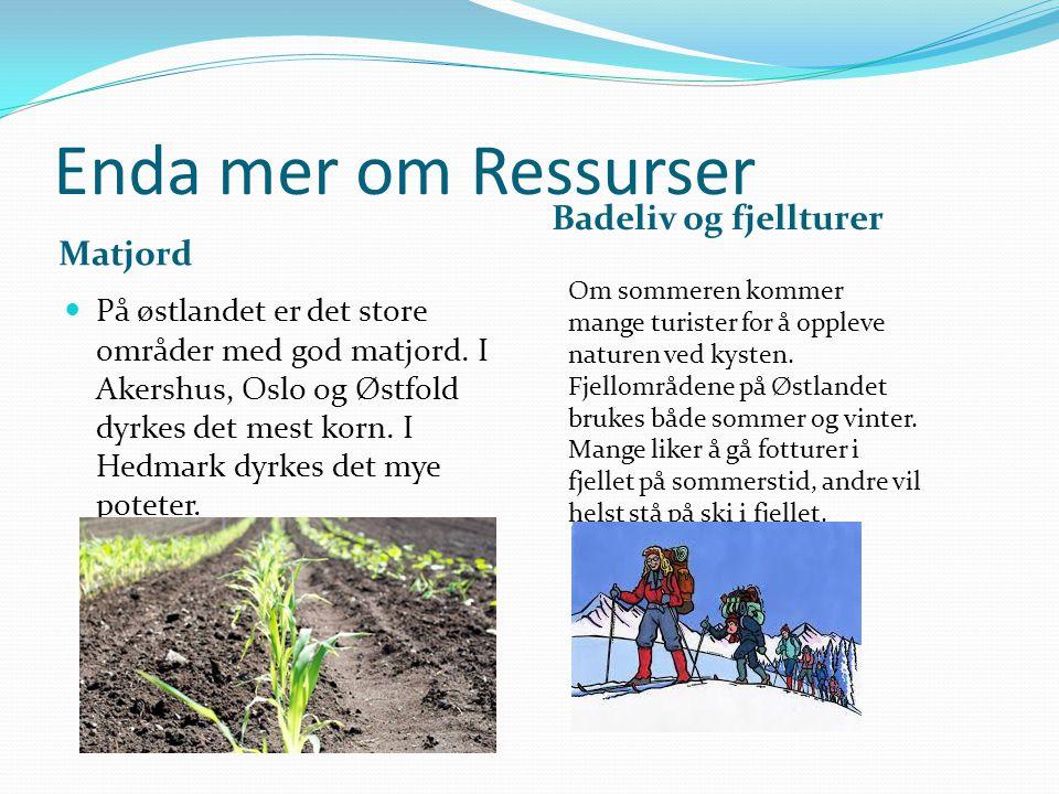 Enda mer om Ressurser Matjord Badeliv og fjellturer På østlandet er det store områder med god matjord. I Akershus, Oslo og Østfold dyrkes det mest kor
