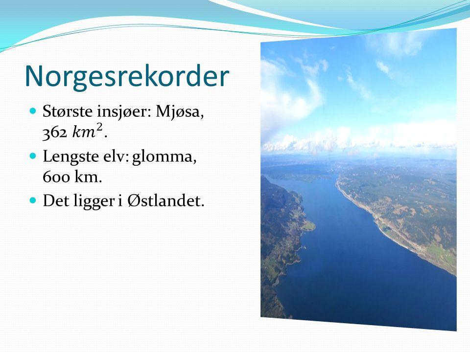 Norgesrekorder
