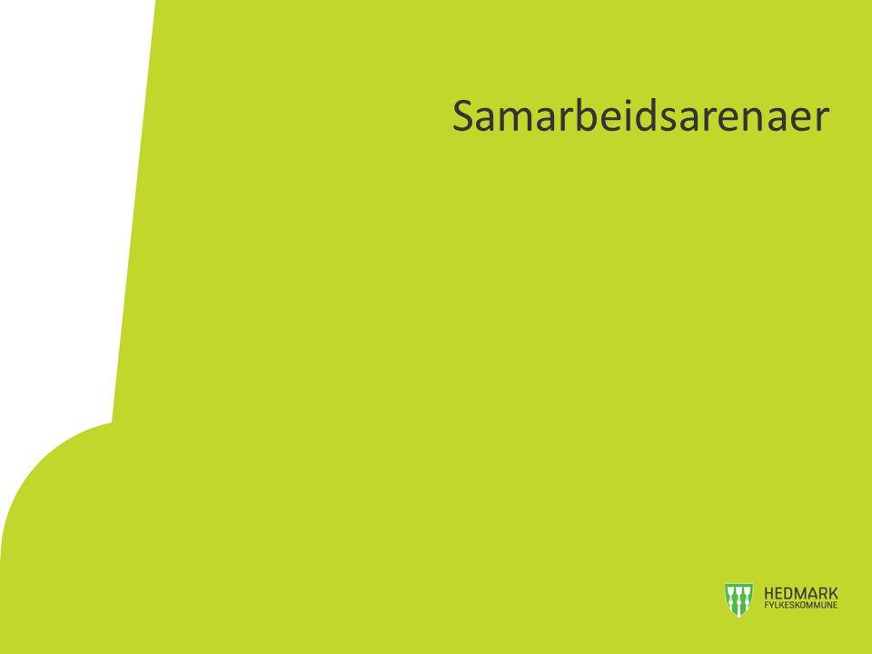 4 regionråd i Hedmark - etablert siden 1994 Fjellregionen 7 kommuner + to fylkeskommuner Sør-Østerdalsregionen 5 kommuner + Hedmark fylkeskommune Glåmdalsregionen 7 kommuner + Hedmark fylkeskommune Hamarregionen (15 medlemmer) (4 kommuner + Hedmark fylkeskommune) Egne vedtekter Regionrådgiver i 100% stilling Regionrådene i Hedmark
