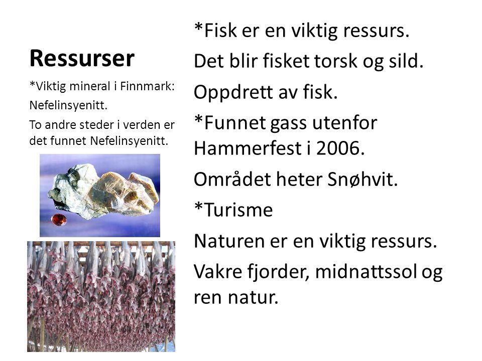 Ressurser *Fisk er en viktig ressurs. Det blir fisket torsk og sild. Oppdrett av fisk. *Funnet gass utenfor Hammerfest i 2006. Området heter Snøhvit.