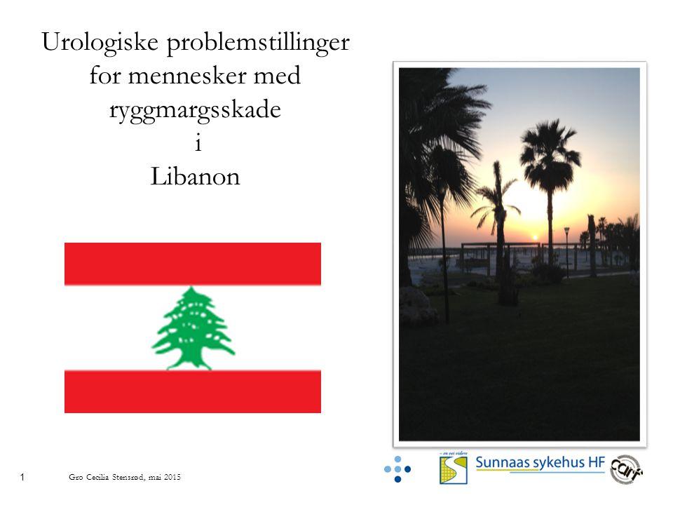 1 Gro Cecilia Stensrød, mai 2015 Urologiske problemstillinger for mennesker med ryggmargsskade i Libanon