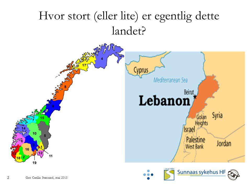 2 Hvor stort (eller lite) er egentlig dette landet? Gro Cecilia Stensrød, mai 2015