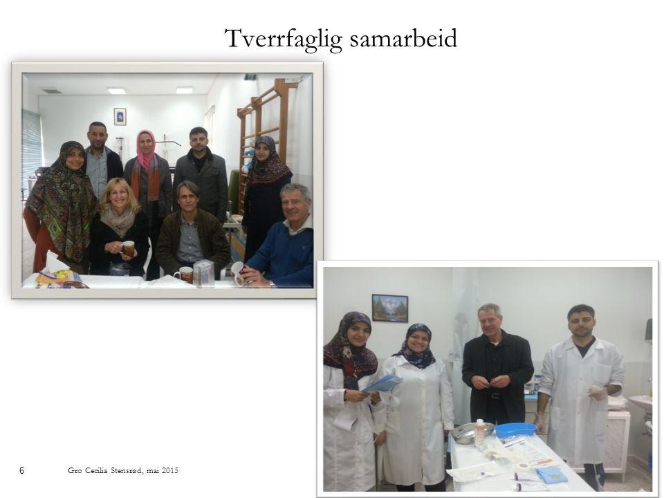 6 Tverrfaglig samarbeid Gro Cecilia Stensrød, mai 2015