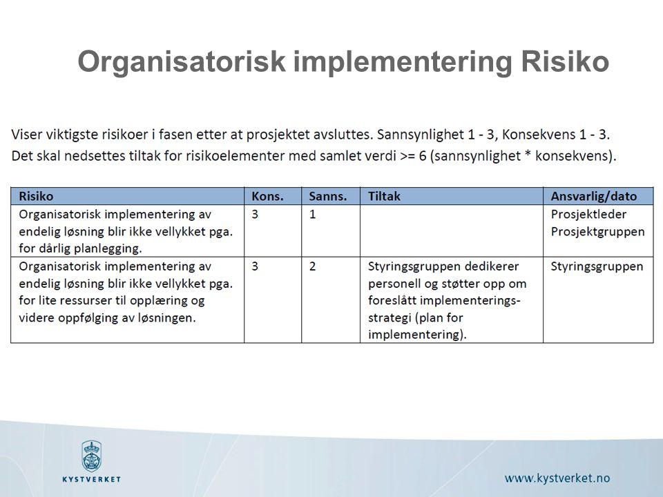 Organisatorisk implementering Risiko
