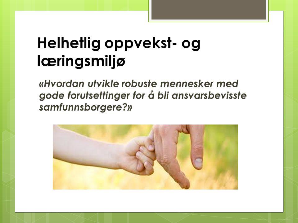 Frivillige lag og org. Privat sektor Hei og hå Offentlig sektor Oppvekst i en livsfasetenking