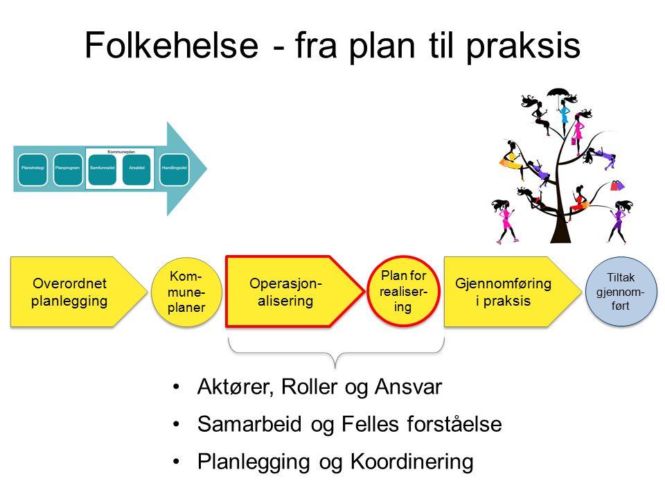 s Overordnet planlegging Kom- mune- planer Gjennomføring i praksis Tiltak gjennom- ført Operasjon- alisering Plan for realiser- ing Aktører, Roller og