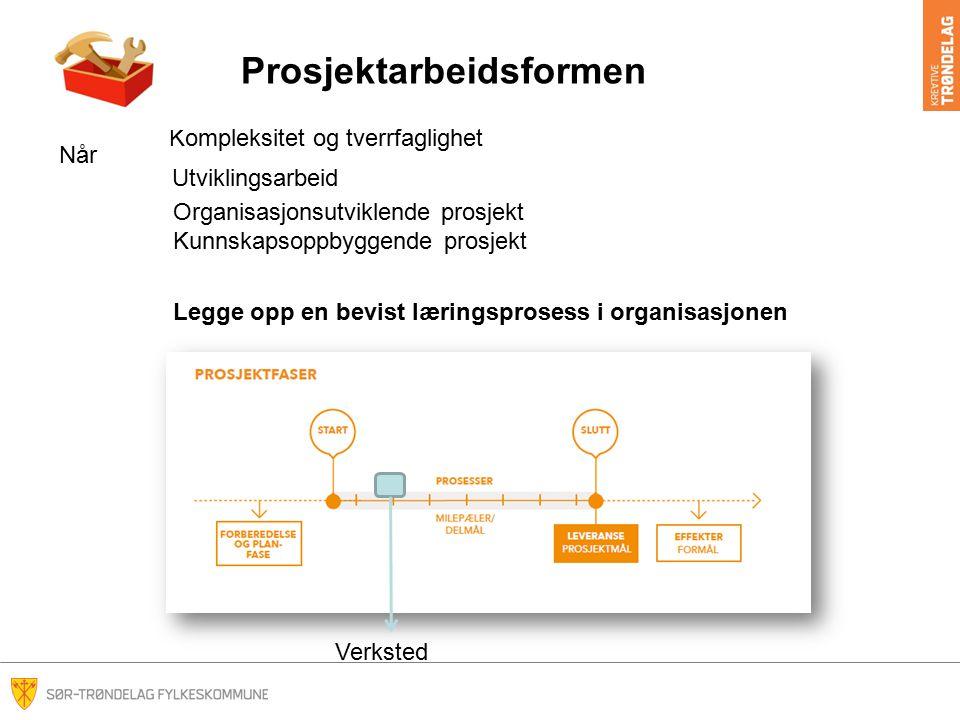 Prosjektarbeidsformen Kompleksitet og tverrfaglighet Utviklingsarbeid Legge opp en bevist læringsprosess i organisasjonen Organisasjonsutviklende pros