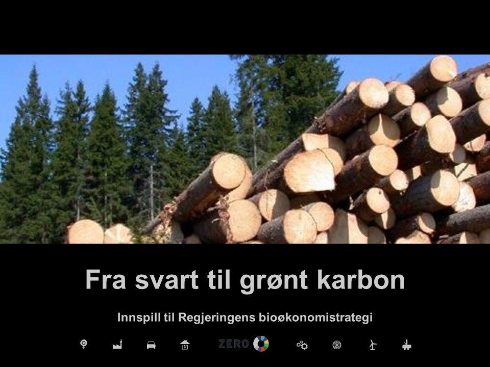 Fra svart til grønt karbon Innspill til Regjeringens bioøkonomistrategi