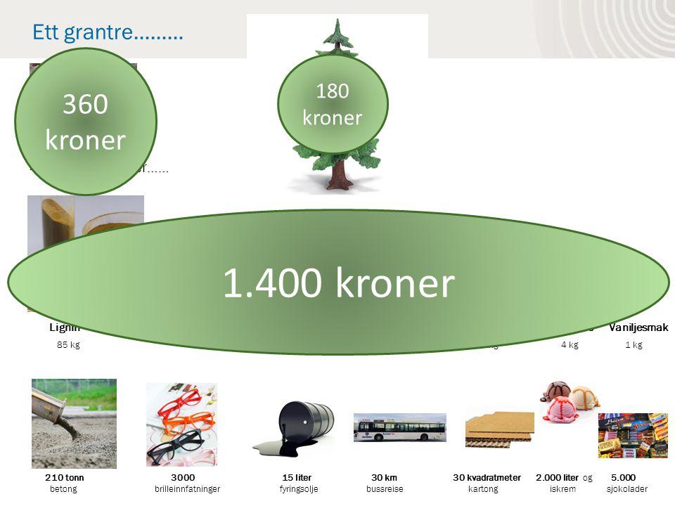 Lignin Spesialcellulose Bio-fyringsolje Bioetanol CO2 Biogass Kvistmasse Vaniljesmak 85 kg 80 kg 25 kg 10 liter 8 kg 2 kg 4 kg 1 kg 210 tonn 3000 15 liter 30 km 30 kvadratmeter 2.000 liter og 5.000 betong brilleinnfatninger fyringsolje bussreise kartong iskrem sjokolader Ett grantre……… 400 kg ved - eller…… 180 kroner 360 kroner 1.400 kroner
