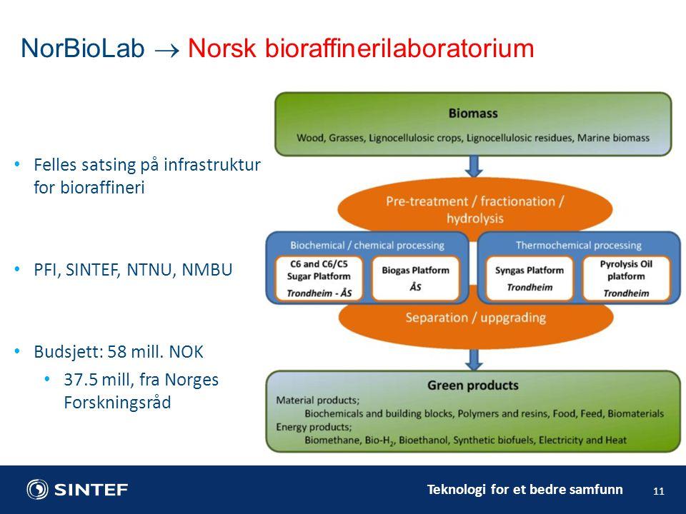 Teknologi for et bedre samfunn Felles satsing på infrastruktur for bioraffineri PFI, SINTEF, NTNU, NMBU Budsjett: 58 mill.