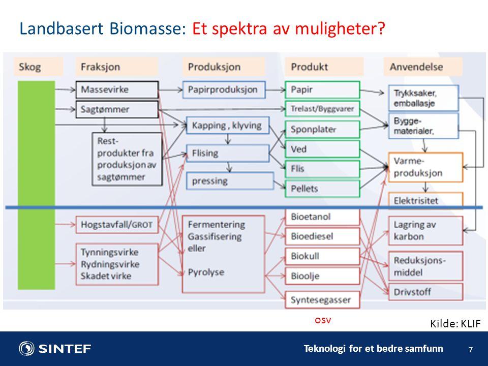 Teknologi for et bedre samfunn 7 Landbasert Biomasse: Et spektra av muligheter Kilde: KLIF osv
