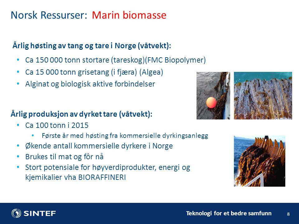 Teknologi for et bedre samfunn Årlig høsting av tang og tare i Norge (våtvekt): Ca 150 000 tonn stortare (tareskog)(FMC Biopolymer) Ca 15 000 tonn grisetang (i fjæra) (Algea) Alginat og biologisk aktive forbindelser 8 Norsk Ressurser: Marin biomasse Årlig produksjon av dyrket tare (våtvekt): Ca 100 tonn i 2015 Første år med høsting fra kommersielle dyrkingsanlegg Økende antall kommersielle dyrkere i Norge Brukes til mat og fôr nå Stort potensiale for høyverdiprodukter, energi og kjemikalier vha BIORAFFINERI