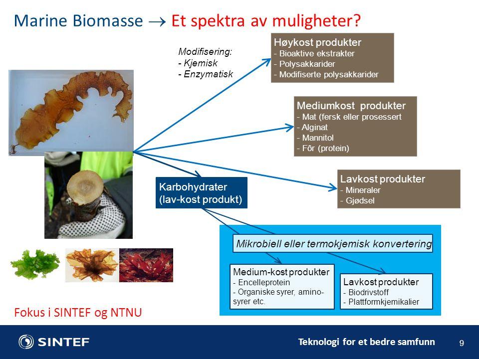 Teknologi for et bedre samfunn Lavkost produkter - Mineraler - Gjødsel Modifisering: - Kjemisk - Enzymatisk Marine Biomasse  Et spektra av muligheter.