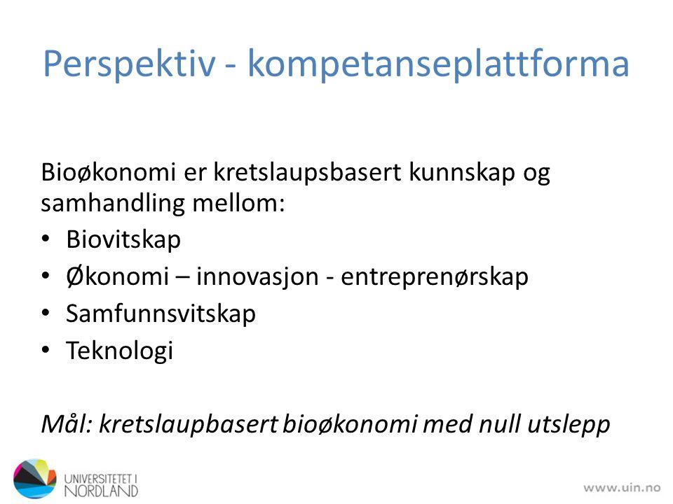 Perspektiv - kompetanseplattforma Største utfordringar: – holistisk syn – innovasjon – verdiskaping
