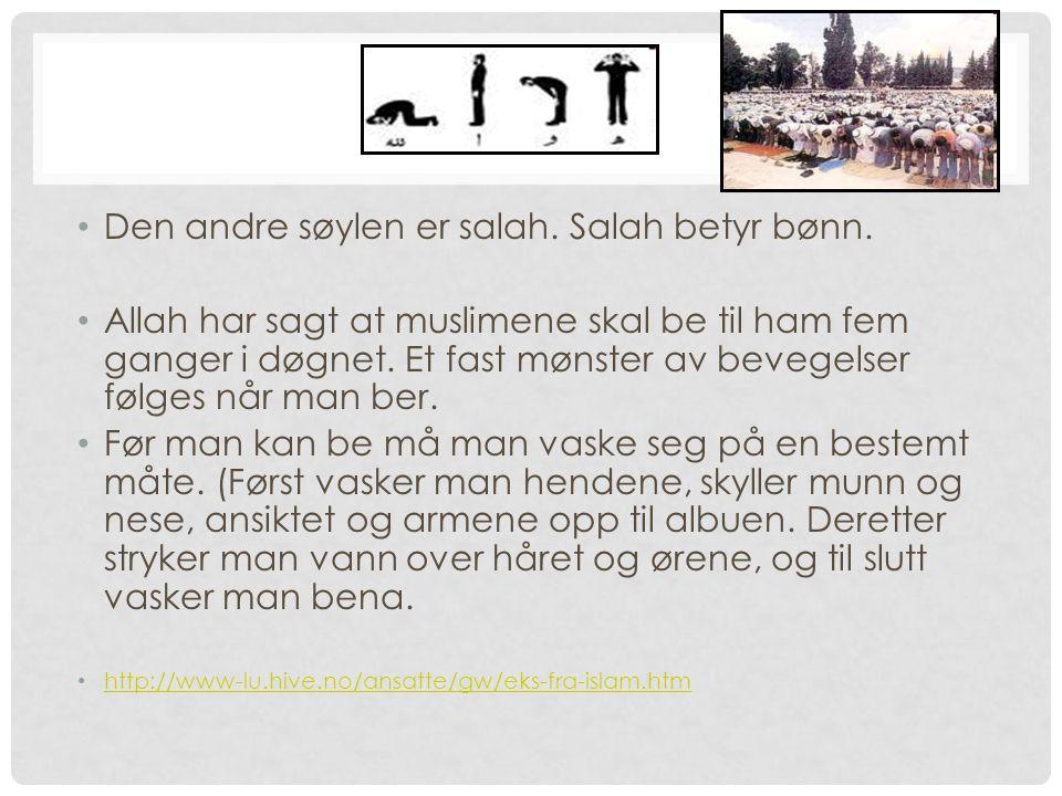 2. SALAH Den andre søylen er salah. Salah betyr bønn. Allah har sagt at muslimene skal be til ham fem ganger i døgnet. Et fast mønster av bevegelser f