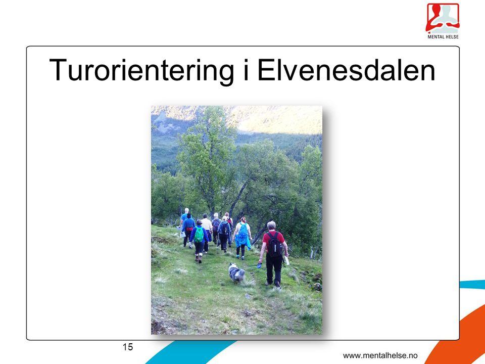 Turorientering i Elvenesdalen 15