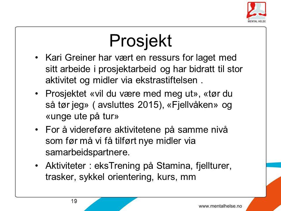 Prosjekt Kari Greiner har vært en ressurs for laget med sitt arbeide i prosjektarbeid og har bidratt til stor aktivitet og midler via ekstrastiftelsen
