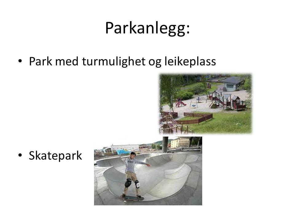 Parkanlegg: Park med turmulighet og leikeplass Skatepark