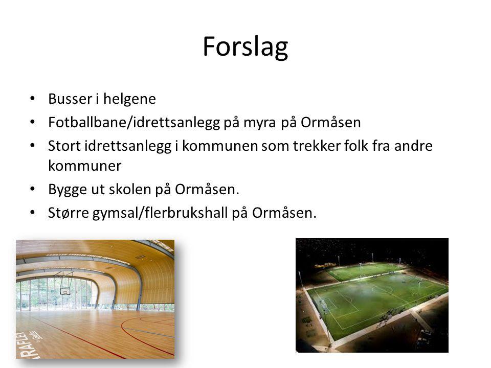 Forslag Busser i helgene Fotballbane/idrettsanlegg på myra på Ormåsen Stort idrettsanlegg i kommunen som trekker folk fra andre kommuner Bygge ut skol