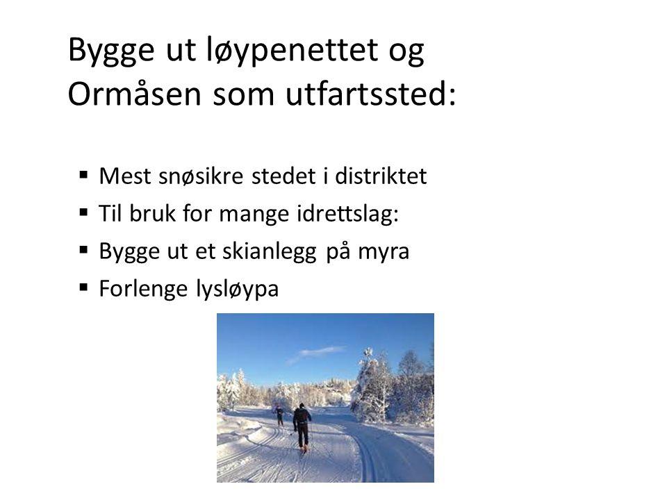 Bygge ut løypenettet og Ormåsen som utfartssted:  Mest snøsikre stedet i distriktet  Til bruk for mange idrettslag:  Bygge ut et skianlegg på myra