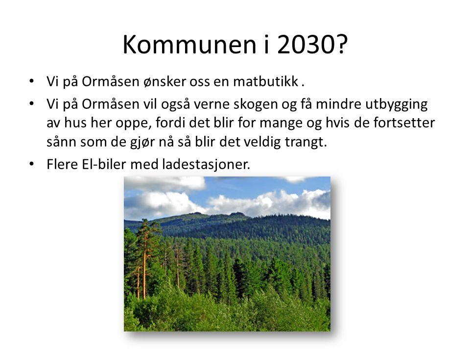 Kommunen i 2030? Vi på Ormåsen ønsker oss en matbutikk. Vi på Ormåsen vil også verne skogen og få mindre utbygging av hus her oppe, fordi det blir for